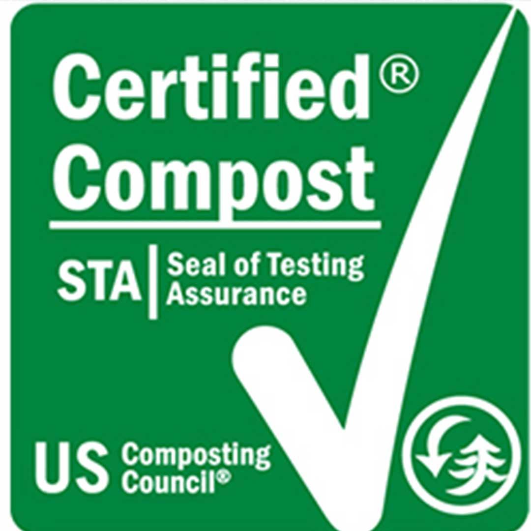 STA Certification