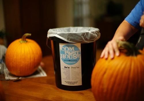 Compost Pumpkins