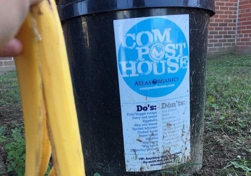 Compost food waste
